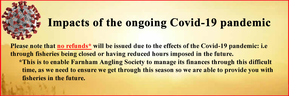 Impacts of the ongoing Covid-19 pandemic